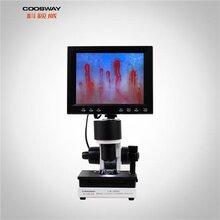 微循環檢測儀CSW-XW880(8寸)