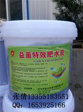 济宁金山生物益菌特效肥水膏图片