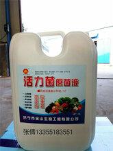 活力菌原菌液、碳酶菌多肽液,微生物菌液圖片