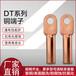規格齊全廠家直銷DT-70平方堵油銅鼻子光伏電纜連接頭中域電氣