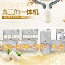 山东日照小型豆腐机报价豆腐机批发零售用豆腐皮机小型商用