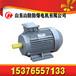 煤礦井下用好品質YBK2-315S-6防爆電機