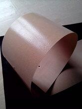 实力厂家直销特氟龙耐温输送带烘干网格带防粘防酸碱输送带图片