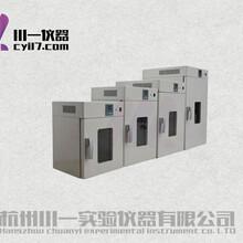 電熱鼓風干燥箱101-00A厭氧/殺菌可選圖片
