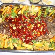正宗重慶烤魚培訓加盟圖片