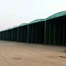 廠家戶外活動帳篷伸縮移動夜宵蓬大型物流倉儲遮雨棚圖片