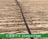 通遼農業大田滴灌帶鋪設安裝費用