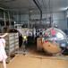 雙層殺菌鍋原理蛋黃高溫殺菌鍋電加熱殺菌鍋廠家