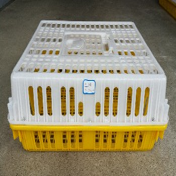 隆安塑料雞籠塑料籠子廣西塑料鴨籠鴿子籠子廠家批發