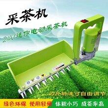 電動茶葉采摘機蘿卜苗采摘機小型采摘機圖片
