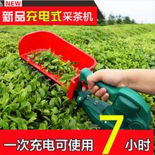 電動采茶機背負式無刷摘茶機茶葉收獲采摘機圖片