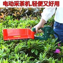 電動手持式采茶機便攜式無刷小型摘茶機茶葉采摘收獲機圖片