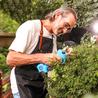 操作簡單花園樹木修剪機蘋果樹修枝剪手拿式樹枝電動剪刀