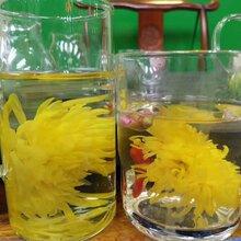 金丝皇菊礼盒18朵装图片