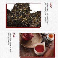 陜西特產涇陽茯茶圖片