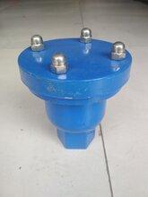 QB1(P1)-10單口排氣閥鑄鐵法蘭排氣閥自動排氣閥絲扣排氣閥廠家直銷圖片