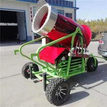 全自动履带式移动造雪机圣诞节飘雪机手推轮式人工造雪机图片