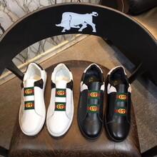 闻名世界的莆田gucci小蜜蜂鞋古驰古奇鞋,质量好的价格大概多少钱?图片