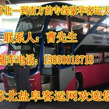 织里到睢县长途客车查询图片