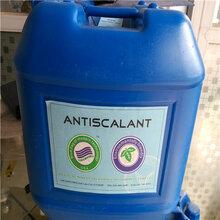 河南清洗劑生產廠家-河南藍旗清洗劑BF-301批發圖片