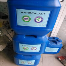 南寧廠家直銷BF-301RO膜清洗劑-原裝進口藍旗清洗劑圖片