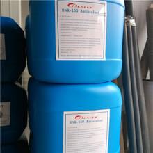 原裝進口貝尼爾阻垢劑BNR-150反滲透阻垢劑陽泉廠家價格圖片