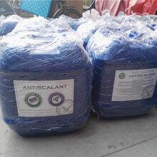 反渗透酸式清洗剂BF-301用在反渗透设备上郑州热销中图片