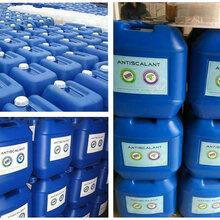 河南廠家直銷反滲透專用清洗劑-藍旗清洗劑BF-301現貨直銷圖片