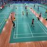 乒乓球馆木地板质量无与伦比美丽-建材