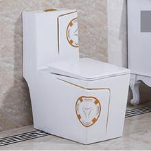 地面安裝大尺寸衛浴陶瓷馬桶高溫彩金馬桶座便器馬桶圖片