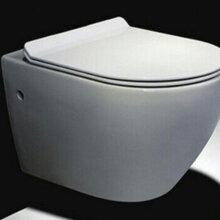 卫浴壁挂式热销款挂墙对冲座便器式马桶座便器图片