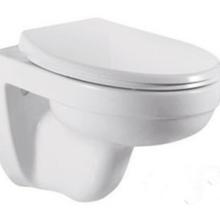掛墻節水馬桶式節水出口熱銷款對沖座便器陶瓷馬桶掛便器圖片