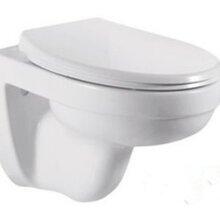 挂墙节水马桶式节水出口热销款对冲座便器陶瓷马桶挂便器图片