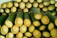 有吃過竹筒飯嗎在哪里可以竹筒飯技術呢