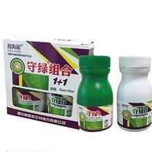 马铃薯病毒病-植物病毒专家-得海龙守绿组合-高效病毒抑制剂