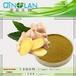 生姜提取物、生姜粉、生姜的功效
