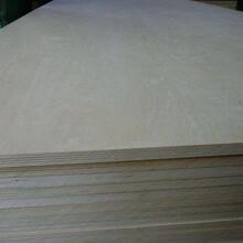 全樺木膠合板包裝板多層板夾板價格優惠量大從優_圖片
