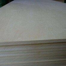 全桦木胶合板包装板多层板夹板价格优惠量大从优_图片