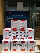 ABB授权代理全国联保马达保护器M102-PwithMD31240VAC图片