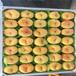 世紀之星2號桃樹苗便宜出售,世紀之星2號桃樹苗哪里有