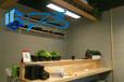 天津红桥直销艺术水泥漆广之源清水混凝土漆产品优势打造一面绿植墙绿色环保