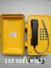 SIP免提/手柄兼容式防水電話SIP-PA-05圖片