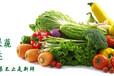 鄭州蔬菜配送公司
