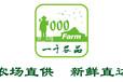 鄭州食材供應商