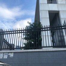 广东清远别墅铁艺护栏艺术围墙护栏锌钢防护栅栏厂商