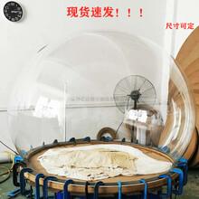 現貨大型圓球罩防護罩透明亞克力圓球罩三分之二圓球透明罩圖片
