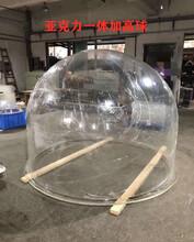 游樂場一體加高圓球亞克力透明加高圓球防護球罩圖片