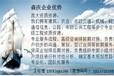 光山县代写投标书投标文件靠谱的写标书