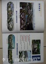 宣化县做可研报告公司可行的报告