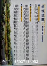 汪清县做可行性报告-写报告可行图片